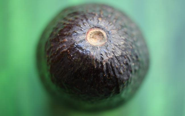 An avacado viewed from above.