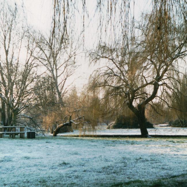 Frosty fen.