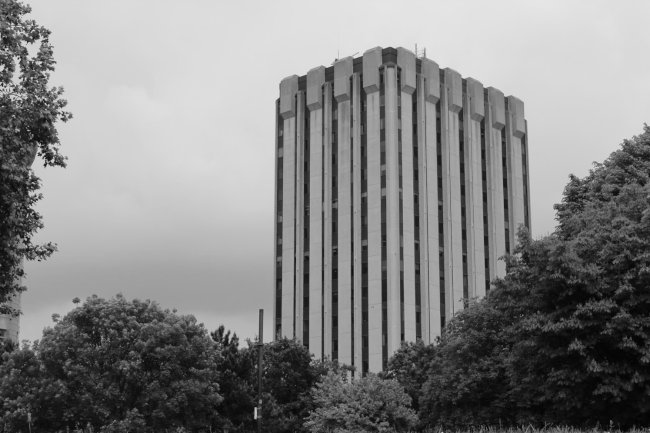 A tower block surrounded by trees.
